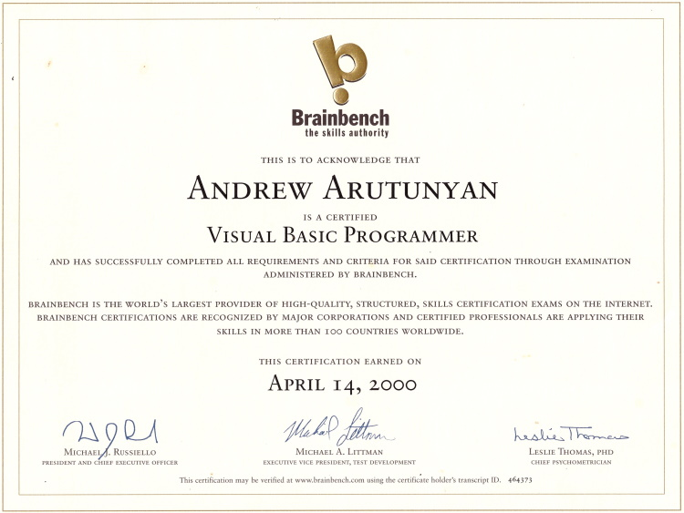 Visual Basic Programmer